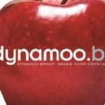dynamoo_biz_-_web