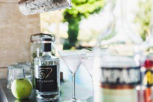 gin67-121
