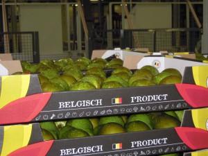 Limburgse peren