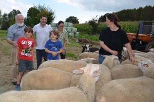 schapên