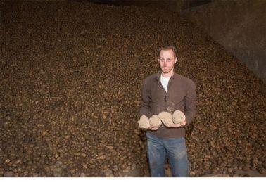 aardappelboeren